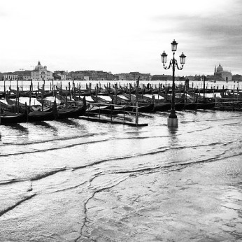 Piazzetta San Marco Venice - Photo: M. Tolga Akbulut